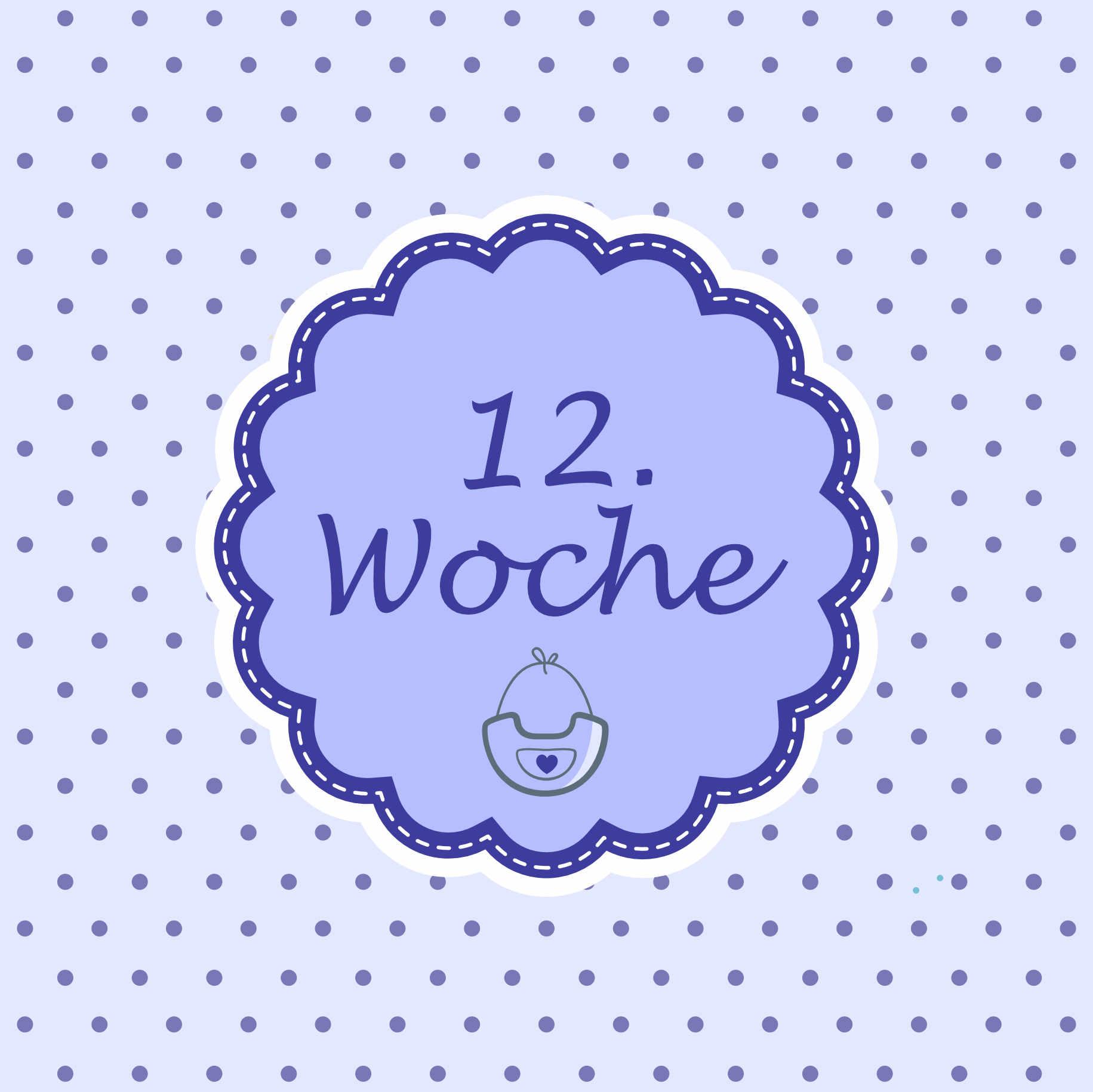 12 Woche Meilenstein Schwangerschaft Instagram