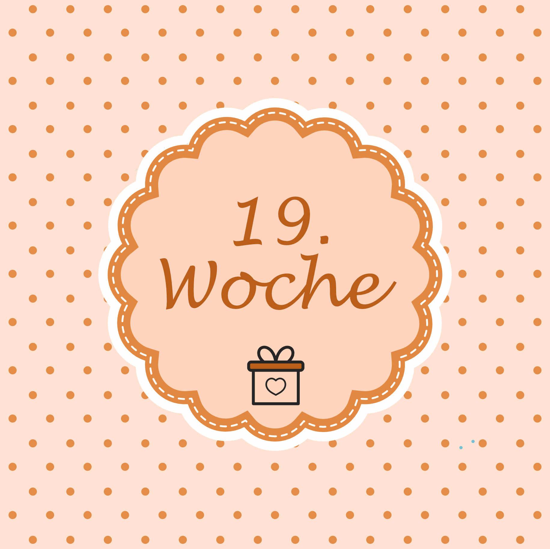 19 Woche Meilenstein Schwangerschaft Instagram
