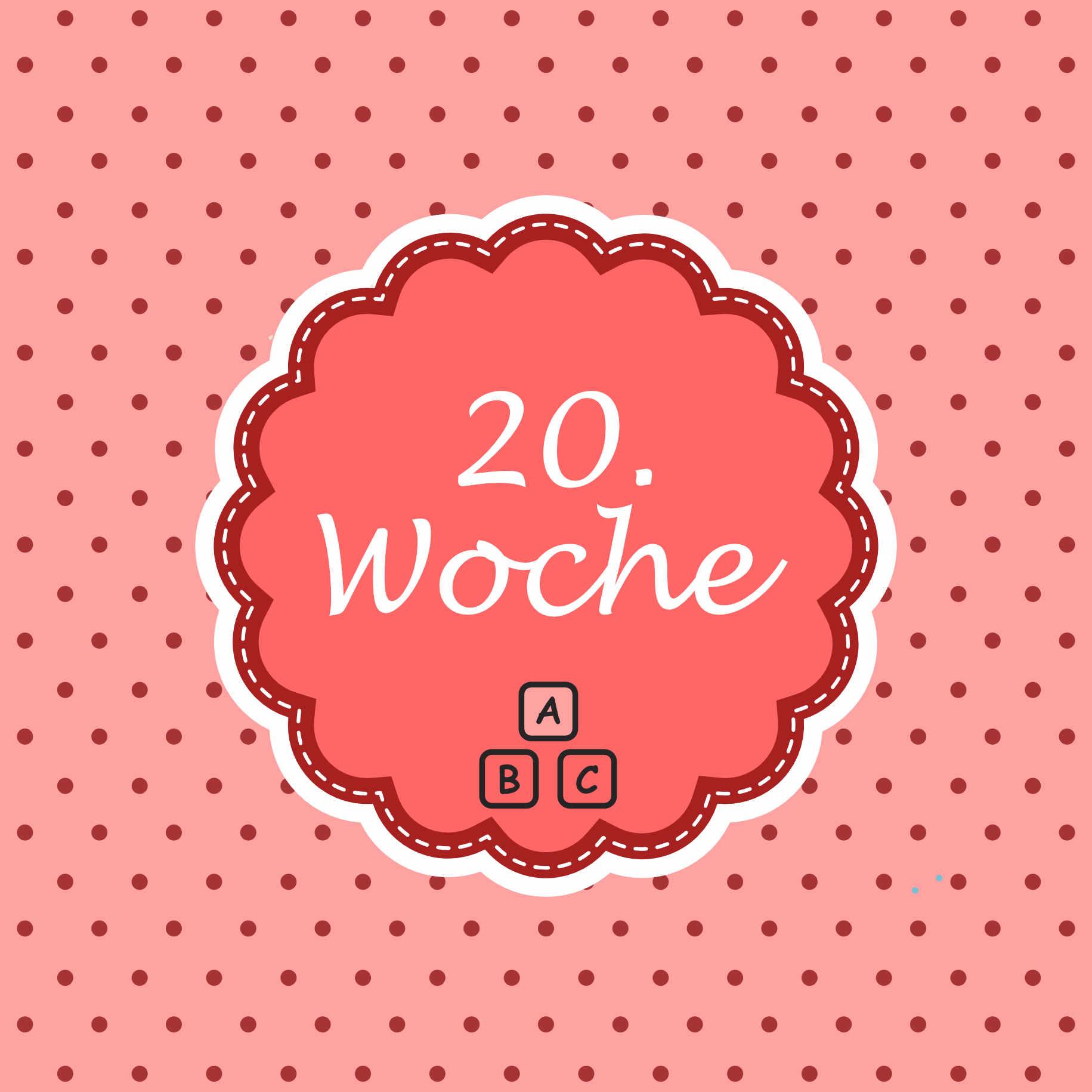20. Woche Meilenstein Schwangerschaft Instagram