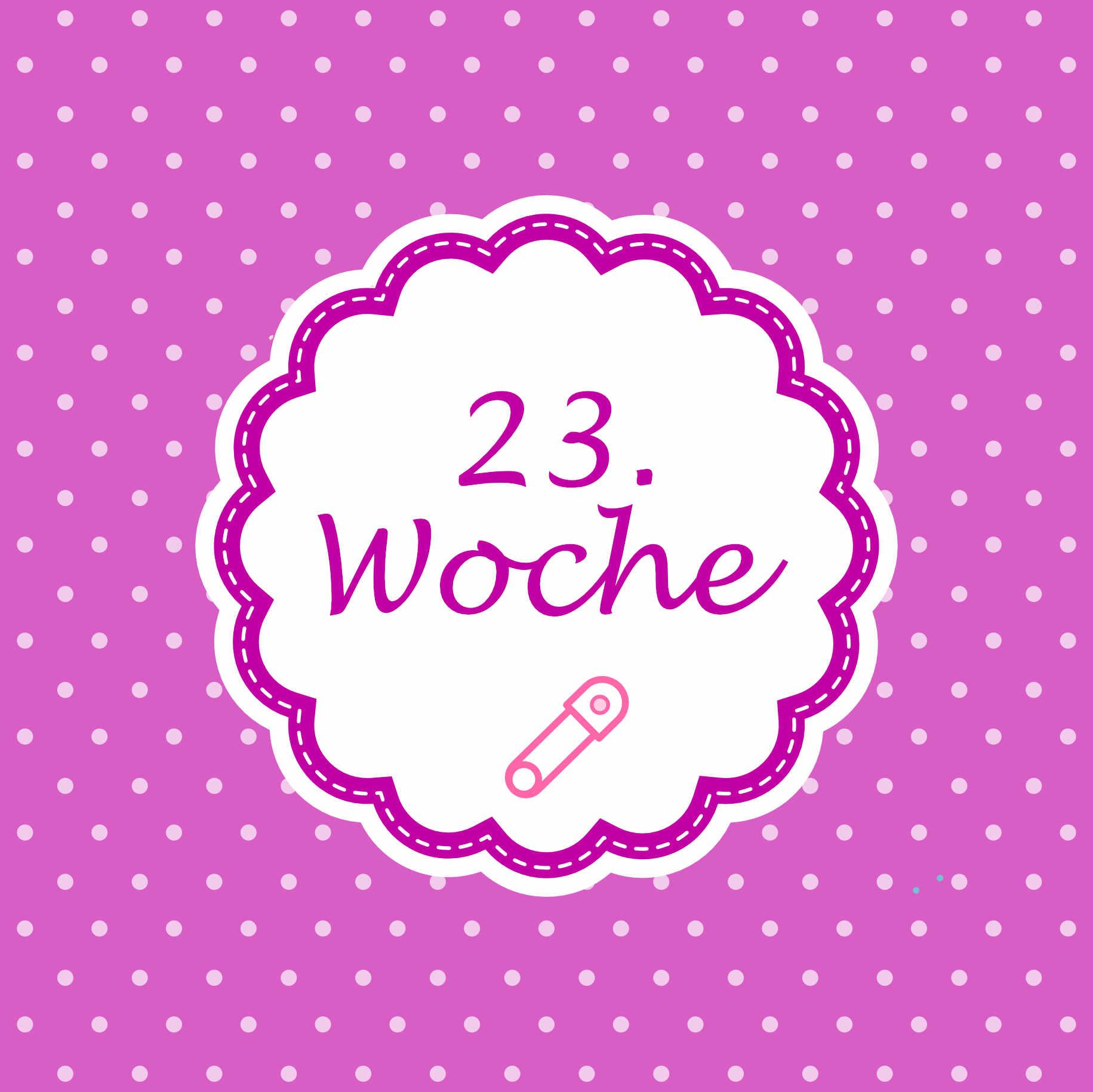 23. SSW Meilenstein Schwangerschaft Instagram