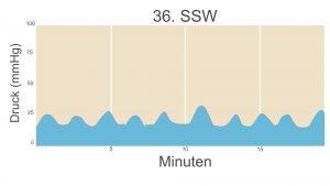 36. SSW