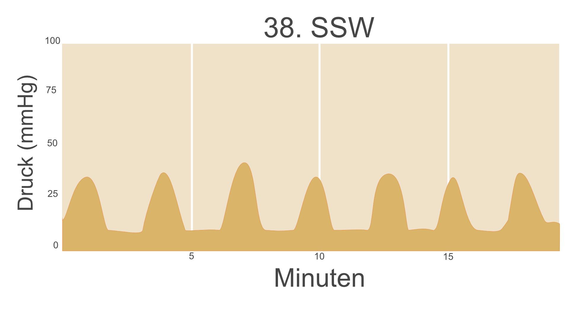38. SSW